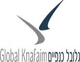 לוגו גלובל כנפיים